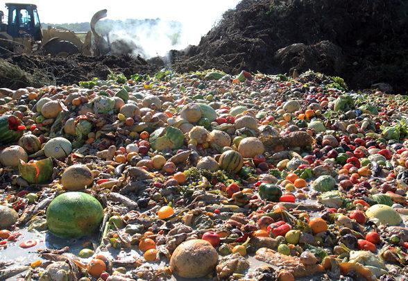 La lutte contre le gaspillage à la source